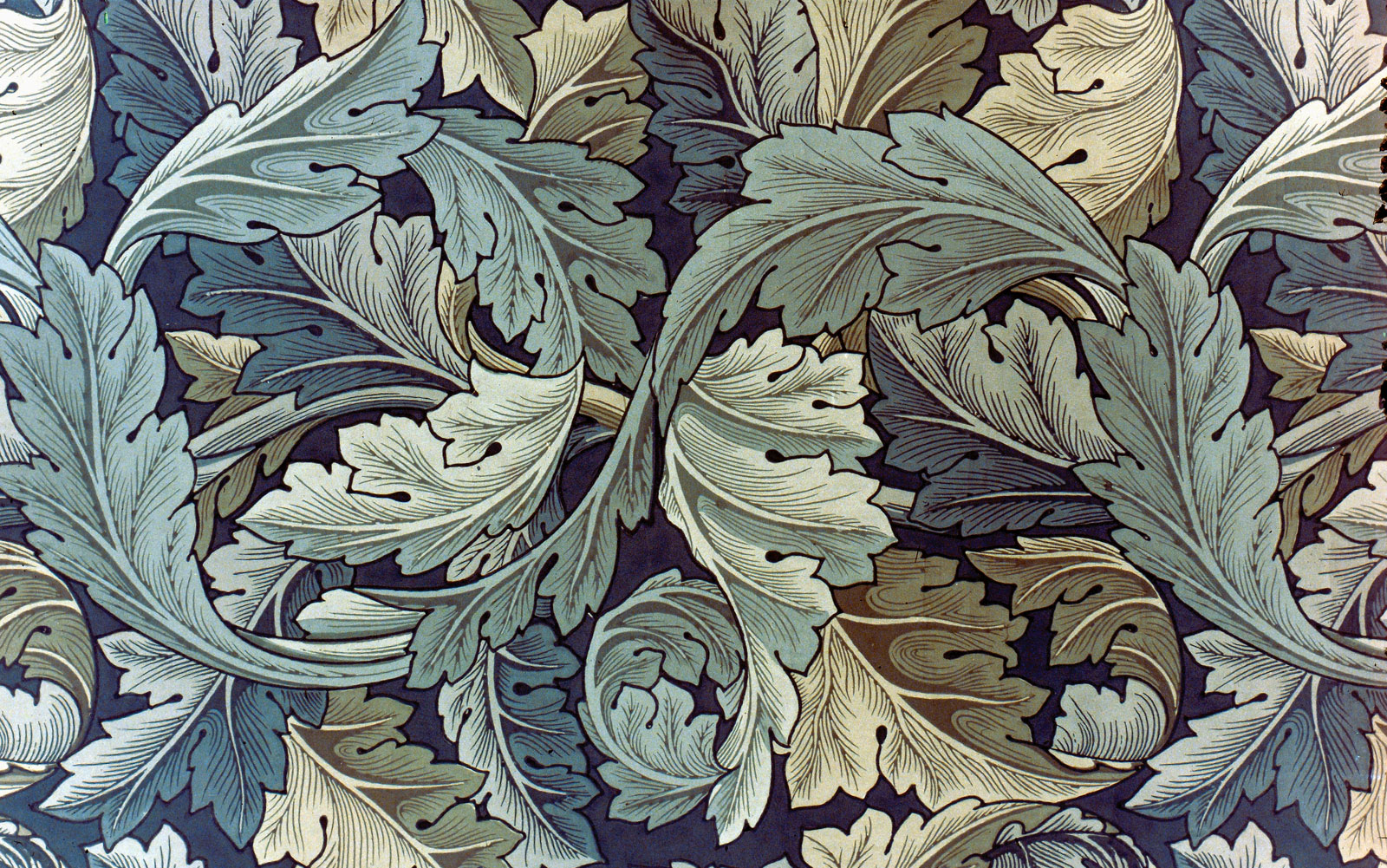 William morris seamsandstitches for Acanthus decoration